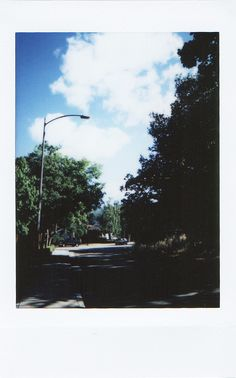Gothic Aesthetic, Nature Aesthetic, Aesthetic Photo, Foto Nature, Estilo Cholo, Logo Facebook, Abstract Face Art, Street Trees, Creative Instagram Photo Ideas