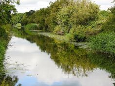 Chichester Ship Canal from the canal basin, Chichester to Chichester Harbour in Birdham via Donnington and Hunston. #boat trips, #fishing #walking #cycling #countryside #cafe
