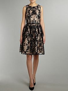 Eliza J Fit and flare lace flocked dress