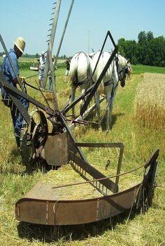 Vintage Tractors, Old Tractors, Vintage Farm, Farming Technology, Amish Farm, Farm Tools, New Farm, Old Farm Equipment, Farm Signs