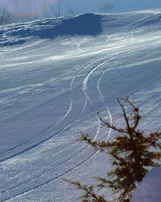 Have you been able to lay down your #firsttracks of the season? #AnotherBestDay #groomer #winterishere  - Dan Ferrer