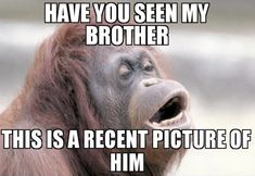 Ugly Brother Meme - a recent picture of my bro Brother And Sister Memes, Funny Brother Quotes, Tag Your Brother, Funny Quotes, Sister Humor, Quotes Quotes, Nephew Quotes, Cousin Quotes, Siblings Funny