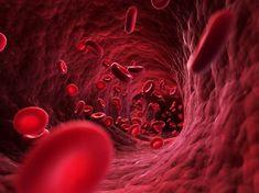 """Bác sĩ Nhật chia sẻ cách """"tắm sạch"""" huyết quản, phòng tai biến"""