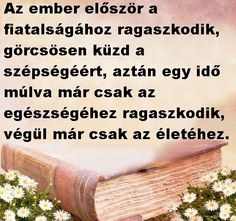 milyen igaz... Wall Sticker, Einstein, Diy And Crafts, Life Quotes, Herbs, Wisdom, Funny, Quotes About Life, Quote Life