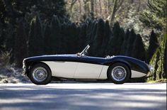 "1955 Austin Healey 100 BN1 ""LE MANS"" | eBay Motors, Cars & Trucks, Austin Healey | eBay!"