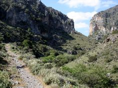 Trail to Sirikari