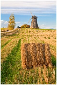 Latgale #2 - , Ludzas  Latvia, Eastern Europe. ~this brings me so many wonderful memories = dry grass..