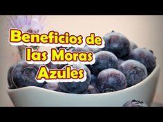 Beneficios y Propiedades de las Moras Azules Para la Salud - YouTube