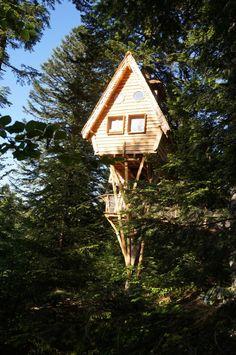 Cabane Nis dau Sapî - Cabane dans les Arbres en Auvergne