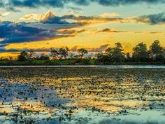 Pantanal com o maior planície alagável do planeta