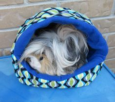 Guinea Pig Plush Igloo AND Cavy Couch PATTERN  make by EmmasBears, $15.00