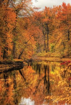 Autumn - Landscape - Autumn In New Jersey Photograph