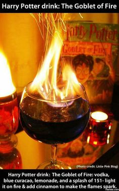 Hairy Potter Goblet of Fire