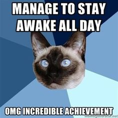 Manage to stay awake all day. OMG incredible achievement. #ChronicIllnessCat