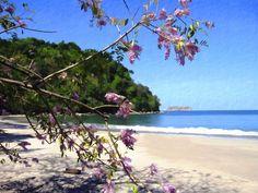 manuel antonio beach, costa rica. favorite place i've ever visited.