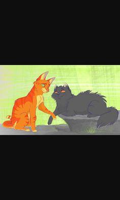 Fireheart and Yellowfang!!!