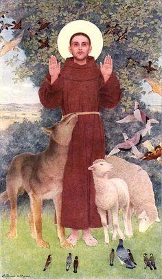 Amigo del lobo y de la oveja...Patrón de los animales y la ecología...