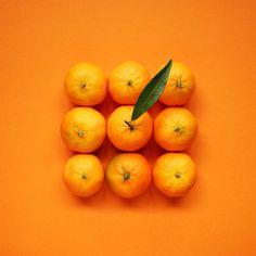 Mandarin Citrus Fruit Still Life Photography, - Obst Fotografie Fruit Photography, Texture Photography, Still Life Photography, Summer Photography, Product Photography, Photography Photos, New Fruit, Summer Fruit, Fruit Fruit