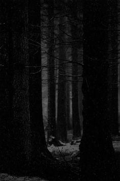 Dark Landscape, The Dark World, Fictional World, Deep Forest, Melancholy, Solitude, Studying, Darkness, Artist