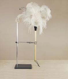 Feather duster no.4 - 80cm Feather Duster, Dusters, White Feathers, Photosynthesis, Plant Leaves, Indoor, Cleaning, Sunlight, Plugs