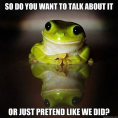 Funny Frogs, Cute Frogs, Les Reptiles, Reptiles And Amphibians, Animal Pictures, Cool Pictures, Funny Pictures, Senior Pictures, Beautiful Creatures