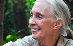 Amazing Reason Jane Goodall Gets Out of Bed Every Morning is Sure to Inspire You to Take Action