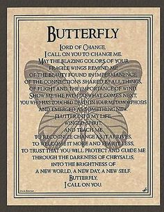 Message from Alexander Butterfly Spirit Animal, Butterfly Quotes, Wiccan Spells, Witchcraft, Celtic Prayer, Spiritual Animal, Animal Spirit Guides, Eclectic Witch, Mythological Creatures