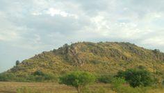 Cerro Pelon, a orillas de la Colonia Jecopaco, Sonora.