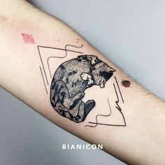 #bianicon #black #cat #tattoos