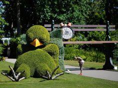 Un chien dans le jardin des plantes de Nantes | Voyage à Nantes ...