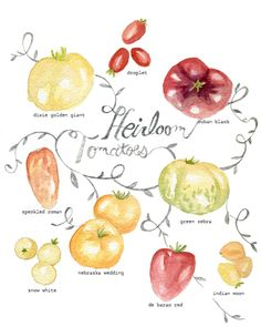 Heirloom Tomatoes Eye candy! by don't eat the paintings