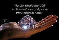bate și întreab-o ce știe. Strong Words, Minerals And Gemstones, True Words, Quotes, Life, Shakespeare, Deep Thoughts, Motto, Motivational