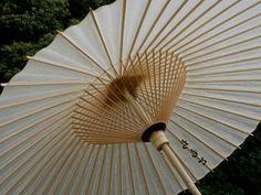 植物園で番傘を差した粋な男性!!|おじゃかんばん『フォトブラ☆散歩物語』