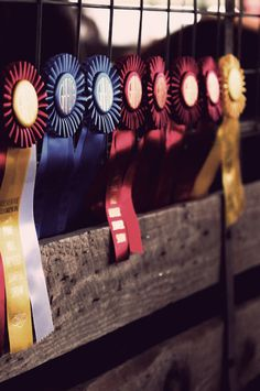Great shot of horse show ribbons on a show stall.