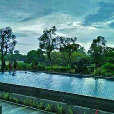 Swim in the rainy season 🏊