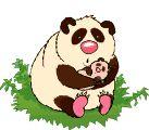 """Desgarga gratis los mejores gifs animados de osos panda. Imágenes animadas de osos panda y más gifs animados como gracias, ángeles, animales o nombres"""""""