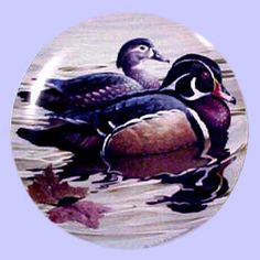 American Waterbirds: Wood Ducks - Hamilton Collection - Artist: Rod Lawrence