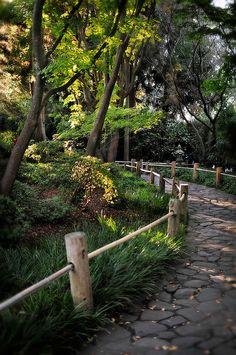 Japanese Tea Garden - Golden Gate Park San Francisco