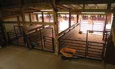 Simple design for a show barn. Horse Shelter, Horse Stables, Horse Farms, Goat Barn, Farm Barn, Rinder Stall, Show Cattle Barn, Show Cows, Horse Barn Designs