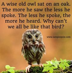 Wise <b>owl</b> <b>quote</b> via www.IamPoopsie.com | My Style | Pinterest