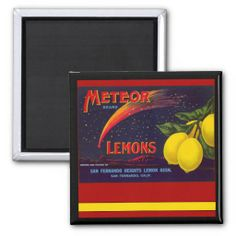 =>>Save on          	California Lemons Vintage Magnet           	California Lemons Vintage Magnet we are given they also recommend where is the best to buyDeals          	California Lemons Vintage Magnet please follow the link to see fully reviews...Cleck Hot Deals >>> http://www.zazzle.com/california_lemons_vintage_magnet-147324879826054023?rf=238627982471231924&zbar=1&tc=terrest