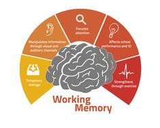 Types of Memory Types Of Memory, Temporary Storage, Working Memory, Understanding Yourself, Memories, Learning, School, Theory, Google Search