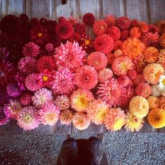25 Florists to Follow on Instagram