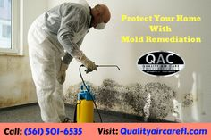 Welcome to Quality Air Care, Our Mold remediation is the process of cleaning the mold and eliminating the moisture problem. For more info, call: Clean Air Ducts, Air Care, Duct Cleaning, Protecting Your Home, Delray Beach, How To Clean Carpet, South Florida, Life