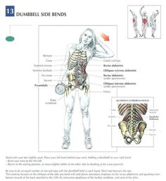 Ab Excersise - Dumbbell Side Bend ~ Re-Pinned by Crossed Irons Fitness