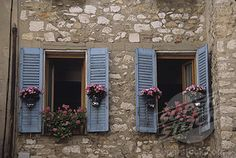 blue shutters and planters
