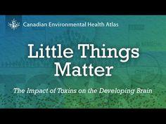Little Things Matter Exposes Big Threat >> Family 2 0 Lifelongfamily On Pinterest