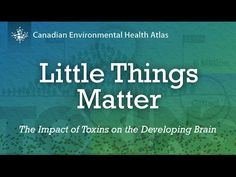 Little Things Matter Exposes Big Threat >> 478 Best Common Chemicals Images In 2019 Bodies Air Pollution