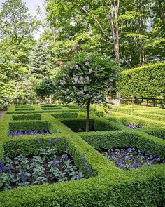 Bunny Williams gorgeous parterre garden in Connecticut