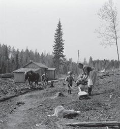 Evacuation of Finnish Karelia - Wikipedia, the free encyclopedia Old Photos, Vintage Photos, History Of Finland, Night Shadow, Somewhere In Time, Cultural Identity, My Land, Ancient History, Norway